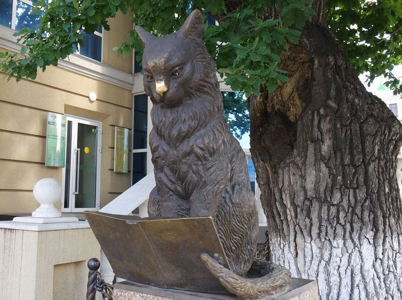 Памятник ученому коту